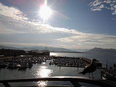 19/11/14: Esta mañana no hemos sido los únicos en admirar las vistas desde lo alto del mirador de las Marismas ;)