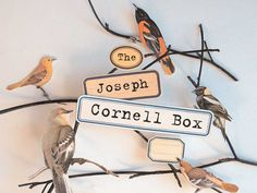 If you are a fan of Joseph Cornell you MUST check out this site. Make your own box and relish in the fantastical magic of creating tiny worlds from found objects.