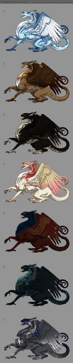 Winged Tarul - Adoptables - character auction by *akreon on deviantART