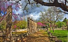 spring time in Ancient Olympia Wonderful Places, Beautiful Places, Amazing Places, Olympia Greece, Seasons In The Sun, Nature Beach, Paradise On Earth, Seven Wonders, Archaeological Site