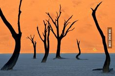 This is not a painting. This is the Namib desert.