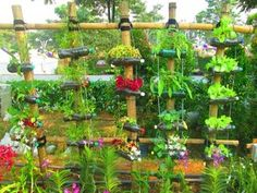 If you prefer the notion of reusing plastic bottles then here you will discover some easy and intriguing handmade recycled bottle Ideas for vertical garden. Recycled Planters, Recycled Garden, Recycled Crafts, Vertical Gardens, Small Gardens, Herb Garden Design, Garden Art, Planter Garden, Diy Garden