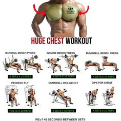 Huge chest Work out step by step tutorial