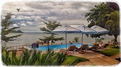 The pool at Alcon Cottages, near Monkey Bay, Lake Malawi