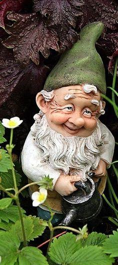 gnomes and hobbits   via cantharide