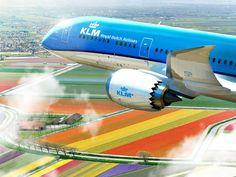 KLM suspend Le Caire, partage avec Air France vers Caracas