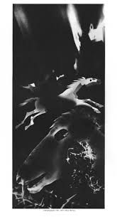 Image result for christian schad  photograms