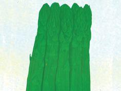 Asparagus Mary Washington | Baker Creek Heirloom Seed Co