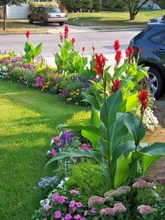 Front Yard Garden Design Beautiful small front yard landscaping ideas low maintenance - You may have many reasons in considering front yard landscaping ideas. But one thing for sure, your front yard has to show who you are. Tropical Landscaping, Front Yard Landscaping, Landscaping Tips, Modern Landscaping, Landscaping Software, Canna Lily Landscaping, Tropical Garden, Florida Landscaping, Inexpensive Landscaping