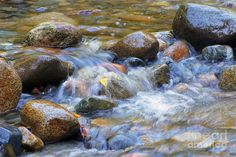 Image result for Paintings of Streams and Rocks