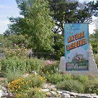 February Gardening Tips from Austin's Natural Gardener