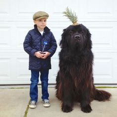 a boy and a dog