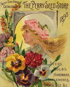 Pansies and Carnations on The Perry Seed Store catalog (1893).