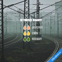 Stress Away - Essential Oil Diffuser Blend