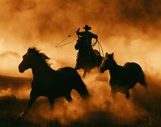 Cowboy And Horses Rodeo Cowboys, Real Cowboys, Cowboys And Indians, Cowboy Horse, Cowboy Art, Cowboy And Cowgirl, Western Riding, Western Art, Cavalo Wallpaper