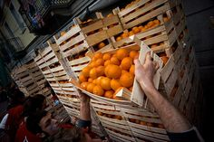battle_of_the_oranges_boxes.jpg (500×333)