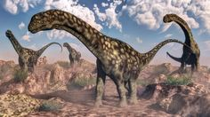 Argentinosaurus which lived in South America during the Late Cretaceous Epoch between 94 and 97 million years ago.