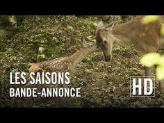 Les Saisons - Bande-annonce officielle HD - YouTube