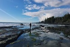 Vancouver Island's Botanical Beach Needs To Be On Your BC Bucket List
