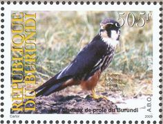 Eurasian Hobby stamps - mainly images - gallery format