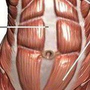 Bauchmuskeln in der Schwangerschaft und danach