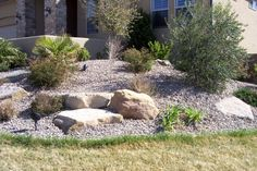 waterless landscaping