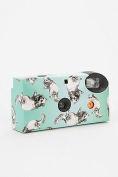 A disposable camera with kitties in every shot! A goofy, but still enjoyable gift.