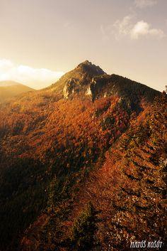 Cold stone's all I see - Velky Rozsutec (Slovakia) Romania, Poland, Sunrise, Mountains, Stone, Park, Travel, Voyage, Sunrises