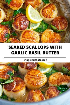 Seared Scallops with Garlic Basil Butter- How to make restaurant-worthy scallops at home. These pan seared scallops with garlic basil butter take less than 10 minutes and taste incredible! Seafood Scallops, Fish And Seafood, Seafood Recipes, Cooking Recipes, Healthy Recipes, Healthy Scallop Recipes, Best Scallop Recipe, Shrimp And Scallop Recipes, Baked Shrimp Recipes