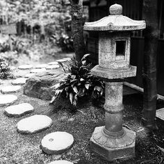 昼間はお休みん中〜〜〜、^_^;?? #石灯籠 #飛び石 #殿ヶ谷戸庭園 #tonogayato_gardens #steppingstones #stonelantern