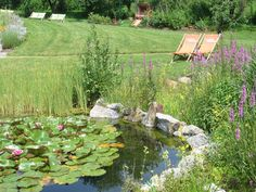 Ein Sommertag am Biotop :) im Relax Resort Kothmühle. Stepping Stones, Relax, Outdoor Decor, First Day Of Summer, Horticulture, Knights, Stair Risers, Keep Calm