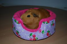 Guinea pig beds.  via Etsy. I love the design of this one...the construction is different than other cuddle cups!