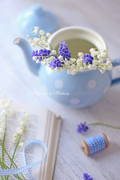 Pretty delicate blooms of Lily of the Valley and Grape Hyacinth placed in a baby blue tea pot. Love Blue, Blue And White, Deco Floral, White Cottage, Lavender Cottage, Lily Of The Valley, My Favorite Color, Spring Flowers, Blue Bird