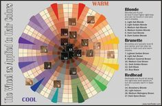 Hair color wheel