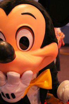 Disney Stuff, Disney Love, Disney Mickey Mouse, Minnie Mouse, Disney Parks, Walt Disney, Daisy Duck, Mickey And Friends, Disneyland