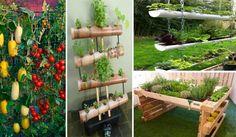 Aprenda Como Fazer Vasos Vertical Suspensos Para Orquídeas e Plantas: 85 Projetos em Bambu, PVC, Garrafa Pet e Pallet - Orquideasoterapia