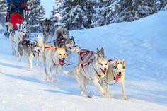 15 stations pour faire autre chose que du ski