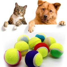 1 PC 8cm Dog Ball for Pet Chew Toy Pet Dog Puppy Tennis Ball Thrower Chucker Ball Launcher Play Toy P20 #Affiliate
