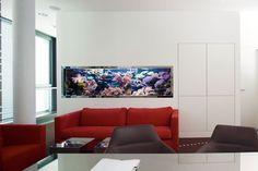 #AquariumWest  Premium-Aquariumbau www.aquariumwest.de #Meerwasseraquariumpodcast  # MarkusMahl  #aquariummuenchen #meerwasseraquarium #aquariumwartung #designaquarium #aquariumbau #meerwasseraquaristik #reeftank #reefbuilders #reefdesign