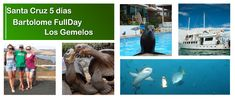 Galapagos Islands, Tours, Tour Guide, Travel Inspiration, Around The Worlds, Santa Cruz, Guayaquil, Beaches, Hotels