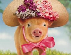 You don't have to dress the pig up but if you choose to it is simply precious!! Who can resist this little piggy????