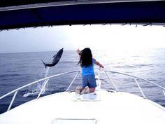 Costa Rica Scuba Diving Report