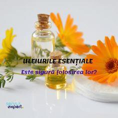 Lavandula Angustifolia, Doterra, Reiki, Perfume Bottles, Soap, Arc, Health, Aromatherapy, Fragrance