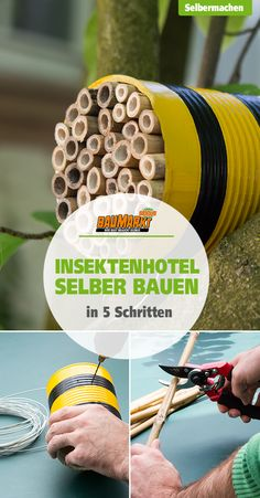Insektenhotel selber bauen Insect hotels or bee hotels serve as a wintering or nesting box for all s Insect Crafts, Garden Crafts, Garden Projects, St. Patrick's Day Diy, Diy For Kids, Crafts For Kids, Arts And Crafts, Bug Hotel, Bees And Wasps