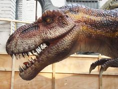 Impartial School Educational Equipment Dilophosaurus Head Skull Model Teaching Supplies Resin Dinosaur Skull Exhibition Model Kids Gifts Office & School Supplies