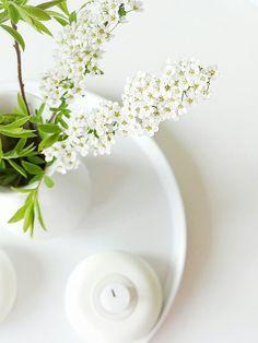 Auf der Mammilade|n-Seite des Lebens: Im Blütenrausch | Ganz viel Frühling für alle, aber auch ganz viel Mehrwert für den Blog?