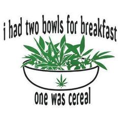 Cannabis: breakfast of champions! Weed Quotes, Weed Memes, Weed Humor, Stoner Quotes, Mj Quotes, Stoner Humor, 420 Memes, Stoner Art, Badass Quotes