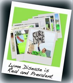 Lyme Disease Myths...THIS IS GOOD FOR EVERYONE TO READ...you won't be hearing it from your doctors (at least the uneducated ones).