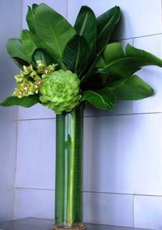 beautiful fresh green Corporate flowers,  corporate flower centerpiece,  add pic source on comment and we will update it. www.myfloweraffair.com can create this beautiful flower look.