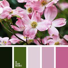 Цветовая палитра №2478 | IN COLOR BALANCE